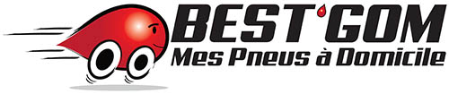 logo-bestgom-web